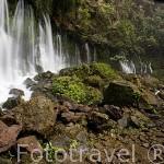 Cascada Chorros de La Calera, cerca de la población de JUAYUA. Ruta de las Flores. El Salvador. Centro américa.