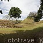 Ruinas de piramides en el complejo arqueológico de San Andres. Al noroeste de San Salvador. Centro américa.