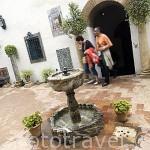Antigua pila bautismal transformada en fuente en el patio de la Cancela. Palacio de Viana. Ciudad de CORDOBA. Patrimonio de la Humanidad. Andalucia. España
