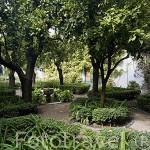 Patio de los Naranjos. Posee 6 naranjos que rodean a la fuente octogonal. Palacio de Viana. Ciudad de CORDOBA. Patrimonio de la Humanidad. Andalucia. España