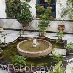 Patio y fuente en el interior de una casa. Ciudad de CORDOBA. Patrimonio de la Humanidad. Andalucia. España