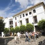 Plaza de Judá Leví. En la calle Manriquez. Ciudad de CORDOBA. Patrimonio de la Humanidad. Andalucia. España