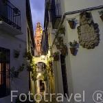 La calle de las Flores. Al fondo la torre de la Mezquita Catedral. Ciudad de CORDOBA. Patrimonio de la Humanidad. Andalucia. España