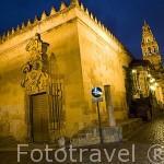 La Mezquita Catedral y la calle Cardenal Herrero. Ciudad de CORDOBA. Patrimonio de la Humanidad. Andalucia. España