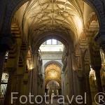 Interior y naves de Abderraman I. La Mezquita Catedral. Ciudad de CORDOBA. Patrimonio de la Humanidad. Andalucia. España