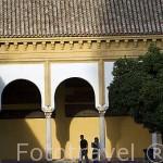 Patio de los Naranjos y soportales. Mezquita Catedral. Ciudad de CORDOBA. Patrimonio de la Humanidad. Andalucia. España