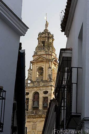 Torre de la Mezquita Catedral desde la calle de las Flores. Ciudad de CORDOBA. Patrimonio de la Humanidad. Andalucia. España