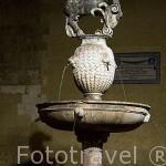 Fuente en la plaza del Potro. Ciudad de CORDOBA. Patrimonio de la Humanidad. Andalucia. España