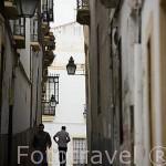 Calle en el casco historico. Ciudad de CORDOBA. Patrimonio de la Humanidad. Andalucia. España
