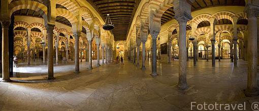Arcos y naves de Abderraman I. Interior de la Mezquita Catedral. Ciudad de CORDOBA. Patrimonio de la Humanidad. Andalucia. España