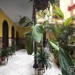 Patio interior del hotel La Casa de los Azulejos. Casco historico de la ciudad de CORDOBA. Patrimonio de la Humanidad. Andalucia. España