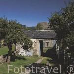 Pueblo de QUINTANILLA DE BABIA con sus casas de tejados en pizarra. Comarca de Babia. Leon. Castilla y Leon. España