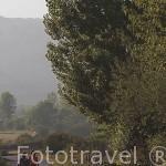 Vecinos paseando por la carretera que va desde RIOLAGO a HUERGAS de Babia. Comarca de Babia. Leon. Castilla y Leon. España