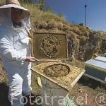 Miel y colmenas de Maria Luisa Riesco a las afueras del pueblo de HUERGAS DE BABIA. Comarca de Babia. Leon. Castilla y Leon. España