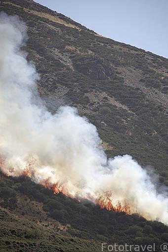 Incendio en una ladera cerca del pueblo de PEÑALBA DE CILLEROS. Comarca de Babia. Leon. Castilla y Leon. España