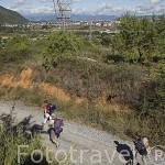 Camino de Santiago. Al fondo la ciudad de PONFERRADA. Provincia de Leon. España. Spain