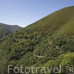 Valle del Silencio cerca de la población de PEÑALBA DE SANTIAGO. Provincia de Leon. España. Spain