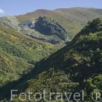 Valle del Silencio cerca de la población de PEÑALBA DE SANTIAGO. Al fondo los Montes Aquilianos. Ponferrada. Castilla y Leon. España. Spain