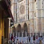 Calle Mariano Domingo Berrueta, al fondo la catedral. Ciudad de LEON. Provincia de Leon. Castilla y Leon. España. Spain