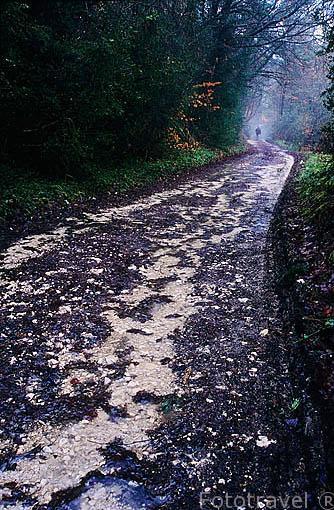 Camino en el Alto de Ibañeta (1057 metros) dejadas por peregrinos. Puerta de entrada a España del camino de Santiago. Navarra. España