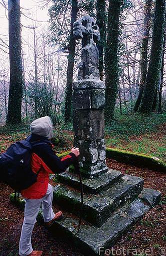 Cruz de los peregrinos (s.XIV). cerca de Oreaga-RONCESVALLES. Camino de Santiago. Navarra. España