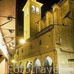 Iglesia de San Saturnino. Casco antiguo de la ciudad de PAMPLONA. Navarra. España