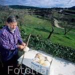 El Sr. Pablo Sanz (Pablito) vecino de AZKETA elaborando varas de peregrino en el patio de su casa. Navarra. España (M.R.048) Camino de Santiago