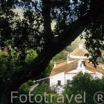 Ermita de Nuestra Señora del Monte. A 4 Kms del pueblo de CAZALLA DE LA SIERRA. Sevilla. España