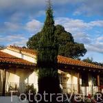 Exterior de los apartamentos. En la casa rural Las Navezuelas. En las a fueras de CAZALLA DE LA SIERRA. Sevilla. España .