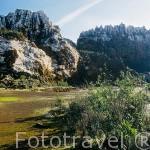 Antigua mina de hierro. Cerro del Hierro. Parque Natural de la Sierra Norte. Sevilla. España.