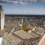 Vista del pueblo de CUELLAR. Comarca de Tierra de Pinares. Segovia. Castilla y León. España
