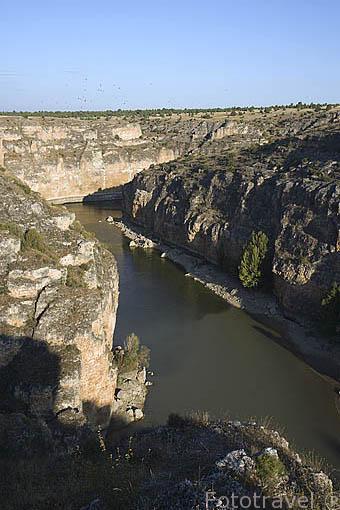 Hoces del Duraton. Cerca de TUREGANO. Segovia. Comarca de Tierra de Pinares. España
