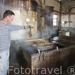 Fabrica resinas Alfonso Criado en ZARZUELA DEL PINAR. Comarca de Tierra de Pinares. Segovia. Castilla y León. España