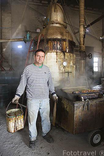 Trabajando con el alambique. Fabrica resinas Alfonso Criado en ZARZUELA DEL PINAR. Comarca de Tierra de Pinares. Segovia. Castilla y León. España