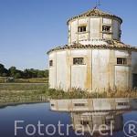 Antiguo palomar cerca de VALLELADO. Comarca de Tierra de Pinares. Segovia. Castilla y León. España