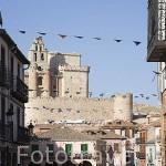 Pueblo de TUREGANO y plaza mayor. Comarca de Tierra de Pinares. Segovia. Castilla y León. España