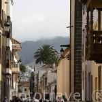 Calle Viana o calle del Pino. SAN CRISTOBAL DE LA LAGUNA. Patrimonio UNESCO. Tenerife. Islas Canarias. España