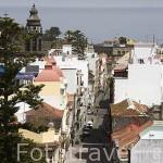 Vista de la ciudad de SAN CRISTOBAL DE LA LAGUNA desde la torre de la iglesia de la Concepción. Patrimonio UNESCO. Tenerife. Islas Canarias. España