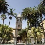 """Iglesia y exconvento de San Agustin. S.XVI. (Instituto de Canarias """"Cabrera Pinto"""") SAN CRISTOBAL DE LA LAGUNA. Patrimonio UNESCO. Tenerife. Islas Canarias. España"""