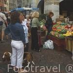 Mercado de la calle Ste. Claire. Centro historico de ANNECY. Alta Saboya. Rhones Alpes. Francia.
