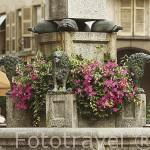 Pequeña plaza de Notre Dame de Liesse y fuente. ANNECY. Alta Saboya. Rhones Alpes. Francia.