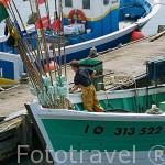 Puerto y barcos pesqueros de LA COTINIERE. Isla de Oleron. Francia