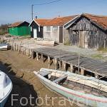 Puerto ostricola y embarcaciones varadas por la marea baja en los alrededores de la poblacion de BOYARDVILLE. Isla de Oleron. Francia