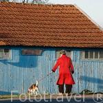 Señora paseando a su perro en el puerto ostricola de LE CHATEAU D´OLERON. Isla de Oleron. Francia