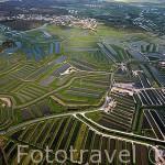 Vista aerea de la zona de salinas y canales irrigables para el cultivo de ostras entre Boyardville y Saint Pierre d´Oleron. Isla de Oleron. Francia