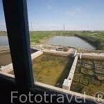 Canales irrigables donde se cultivan las ostras. MARENNES. Frente a la isla de Oleron. Francia