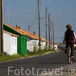 Paseando en bicicleta junto a las casas de pescadores del puerto ostricola de LA BAUDISSIERE. Isla de Oleron. Francia