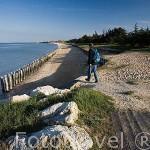 Playa en marea baja cerca de LA BAUDISSIERE. Isla de Oleron. Francia