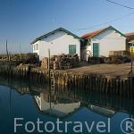 Puerto ostricola del canal de ORS. Isla de Oleron. Francia