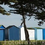 Casitas de bañistas en la playa de La Boirie. SAINT DENIS D´OLERON. Isla de Oleron. Francia